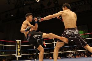 MMA en UFC Vechtstijlen